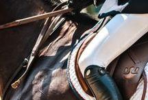 Horses & Style