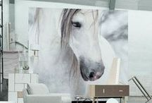 Equine & Decor / Be inspired by your passion of horses through design.