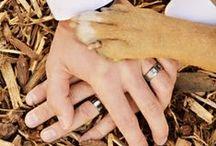 Wedding Photography Ideas / by Joshua Heath
