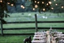 Celebrate. / Dinner Parties, Birthday's & Fairy Lights