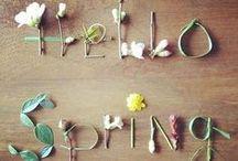 Frühlingsgefühle | creatisto / Der Frühling ist da! Und mit ihm frische Farbe: Wir präsentieren euch die neusten Frühlingsdesigns mit prächtigen Blumen-Prints und dazu eine menge Anregungen, um euch die Farbenpracht ins Haus zu holen!