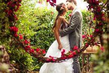 Wedding ⛪️ / by Zarah Karlsson