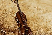 ll Music for Life ll / Music is the Language of Passion....