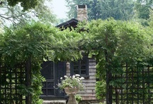 Garden / L/B exterior / by greg lofgren