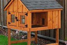 Rabbit Hutches / Bayhorse has the ideal home for your rabbits in traditional board and batten or Duratemp siding in a rainbow of ccolors.