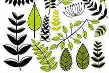 inspiration - vegetation