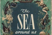 Great Book Covers / Beautiful, awesome, interesting book covers!
