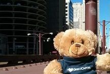 Teddy Bear Takes Chicago / Our office teddy bear recently visited Chicago. Use this board to find out where he went!