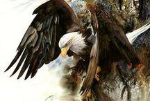 Realistic Wildlife Paintings