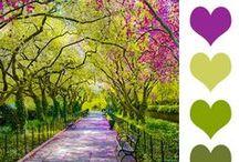 Combinando colores