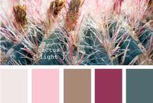 palette of color...