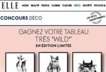 Journal - Les Petits Collectionneurs / actualités