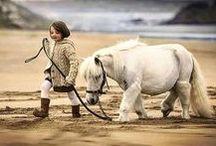 animals and children I. ...