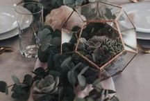A Succulent Wedding / Love succulents? Here is how to use them in your wedding!