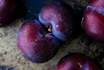 COLOR PLUM COLLECTION