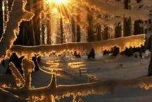 Beauty of seasons