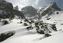 Winter Wonderland / Photo Gallery of the backcountry -- snowboardmountaineer.com