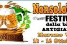 Nonsolobirra Festival della Birra Artigianale / Festival della birra artigianale