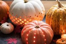 FALL / Fall. pumpkins. campfires. fireworks. all things autumnal.