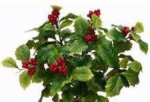 Christmas / Chrsitmas Greenery at Stevens and Son Wholesale Florist