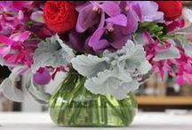 Teresa's Test Drive / In this album you will be introduced to many of the vases and flowers sold here at Stevens and Son. Our wonderful Teresa is a fabulous designer with a wide variety of knowledge that could help you out with any questions you may have about our products. Under each picture is a description of the vases and tips on how they can be used!
