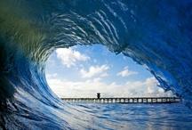 surf / surf / by joy surf