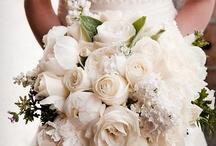 Novias / Pregunta por nuestro servicio para novias y bodas