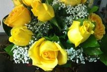 Día de la Madre / Ramos, flores y plantas para el día de la Madre