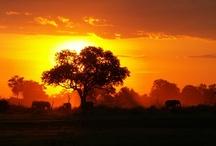 Beautiful! : ) / by Jazmin Tully