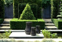 Pots, urns, planters.... / Anything to plant in that enhanced a garden...