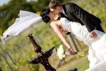 Weddings / Weddings of every size and description! We can do it all!