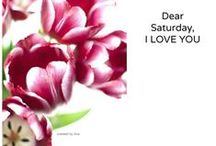 I juste love Weekends!!!!! Happy Saturday!!!