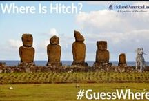 """Guess Where with Hitch / Each week Travelink's spokespup Hitch sets off for a fabulous destination and we ask our followers to """"Guess Where Hitch is?""""  This pinboard shows all the locations of Hitch's adventures."""