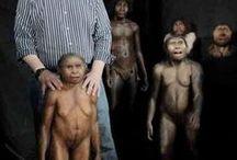 hominization