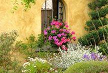 Garden Retreat... / by Kam Tetley