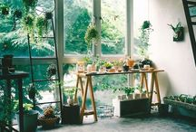 Architecture&Decoration/Interior&Home / Home/Design/Create/Soft/Bohemian/Architecture/Decorations/