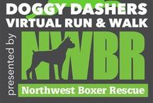 Doggy Dashers 2015 / Event presented by Northwest Boxer Rescue