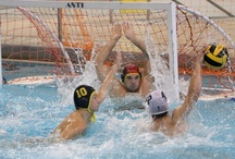College Waterpolo