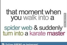Just For Fun / Humour from the world of fighting and martial arts