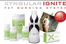 xyngular ignite / Excessive weight is a growing worry for many individuals. This is why a bunch of people look for the most effective and fast weight loss approaches to steer clear of the health dangers that go with this condition. Nevertheless
