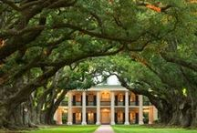 SOUTHERN LIVING ARTFULLY STAGED / Style & Flavor Of The Splendor Of Southern Living / by Val Simich