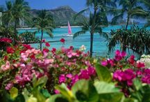 Turquoise Paradise / by Rhonda