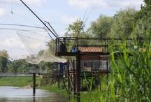 Natures de ville / Entre développement urbain, protection de la nature et réinvention de l'agriculture