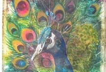 Pretty Peacock Stuff