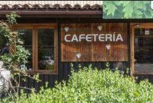 Restaurantes y cafeterías :: Servicios en Cabarceno, Cantabria; Spain