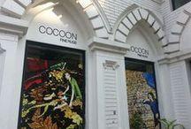 Cocoon Calcutta Gallery