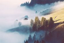 Foggy Landscapes