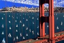 San Francisco / by Judy Schrader