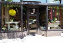 Inside Garden of Eden / Step inside our store on Grand Ave. and see what's new!
