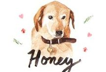 HONEY <3 / by Random Acts of Pastel